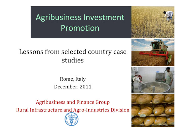 Agribusiness Investment Promotion: Lessons from selected country case studies