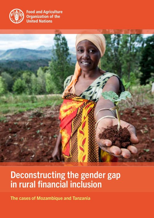 Deconstructing the gender gap in rural financial inclusion