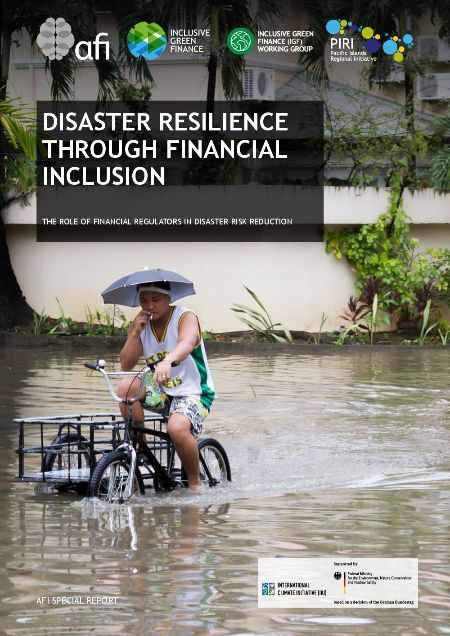 Disaster Resilience Through Financial Inclusion
