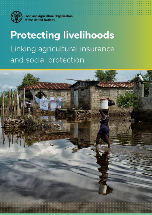 Protecting livelihoods – Linking agricultural insurance and social protection