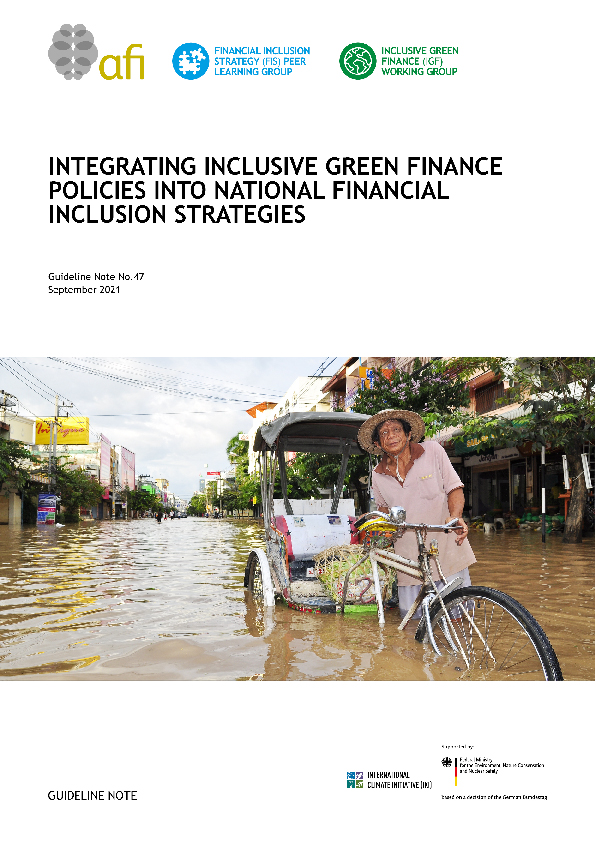 Integrating Inclusive Green Finance Policies into National Financial Inclusion Strategies